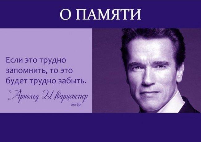 малярийного цитаты о великих актёрах и кино хочу сказать, что